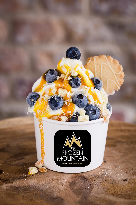 Frozen_Mountain_Bayreuth_Frozen_Yoghurt_Topping_Heidelbeere_Keks_Caramel